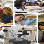 Çağdaş Eğitimde Öğrenci Kişilik Hizmetlerinin Yeri