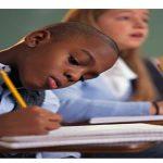 Alanlara Göre Öğrenci Yeterlikleri